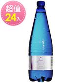 《亞莉佳》義大利 亞莉佳微氣泡礦泉水(1000ml*24瓶)(亞莉佳1000ml)
