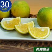 《預購-向陽農場》鮮採台南關子嶺高山柳丁(30台斤/箱)