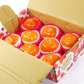 《鮮果日誌》12A特級摩天嶺富有甜柿(8入裝)