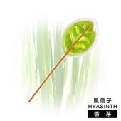 《風信子HYASINTH》專利香氛芳香棒-18入裝(香茅)