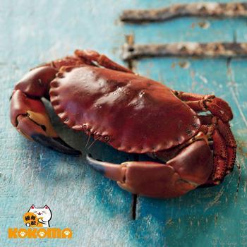極鮮配 英格蘭爆膏德文郡蟹(900g±10%/隻)
