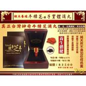 《百年永續健康芝王》椴木養殖牛樟芝(菇)子實體滴丸32g /盒