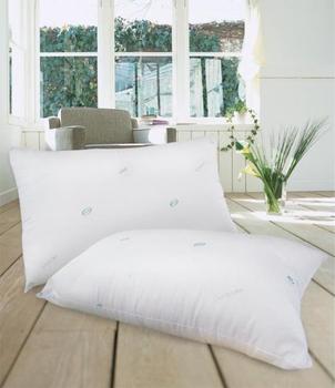 剋菌寶 防蹣抗菌舒眠枕-45*74cm(2入組)