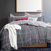 《FOCA-伊瀾》雙人-八件式100%精梳純棉舖棉二用被床罩組(雙人羽絲絨冬被x1)