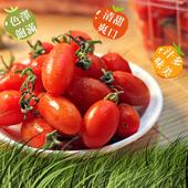 《鮮果日誌》玉女小番茄(10盒裝)