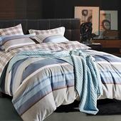 【Betrise】特大-環保印染德國防螨抗菌精梳棉四件式兩用被床包組-經典劇情