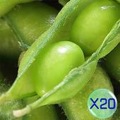 《禎祥食品》外銷日本A級鹽味毛豆 (共20包)