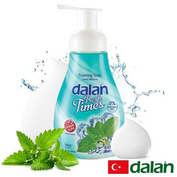 《土耳其dalan》清新薄荷洗手慕斯(300ml)