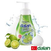 《土耳其dalan》抗菌萊姆洗手慕斯(300ml)