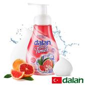 《土耳其dalan》溫和鮮柚洗手慕斯(300ml)