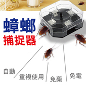 環保蟑螂捕捉器 +手提磅秤/行李秤  超值組合(組合一)
