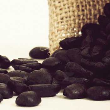 《Gustare Caffe嘉士德》精選瓜地馬拉-花神咖啡豆(隨手包110±5g/包)