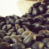 《Gustare Caffe嘉士德》精選東帝汶咖啡豆(隨手包110±5g/包)