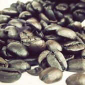 《Gustare Caffe嘉士德》精選西達摩咖啡豆(隨手包110±5g/包)