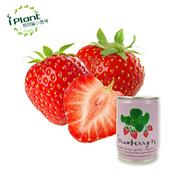 《iPant》易開罐頭花卉蔬果農場(草莓)