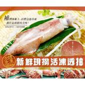 《幸福小胖》新鮮現撈活凍 透抽(長26~30cm/300g)(1隻)