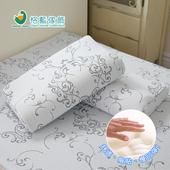 《歐卓拉》日本旭川模型記憶枕(2入)
