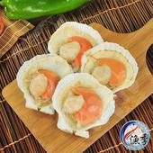《漁季》特級鮮嫩扇貝 (500g/包)(2包)
