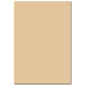 EZ-PRINT A4-全頁牛皮色自黏標籤紙 噴墨雷射通用50張x2包(A4全頁---210x297mm)