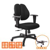 《GXG》人體工學 雙背椅 (升降鋼板扶手) TW-2991 E8(請備註顏色)