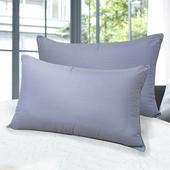 《皮斯佐丹》健康竹炭纖維枕(2顆)(46*74cm)