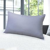 健康竹炭纖維枕(1顆)