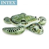 《INTEX》大海龜戲水浮排(約 150x127 cm)