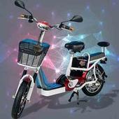 《勝一》EV-16S48V電動輔助自行車(紅色)