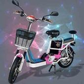 《勝一》EV-16S48V電動輔助自行車(粉色)