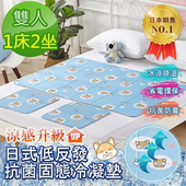 《Betrise》日本夯熱銷固態低反發抗菌凝膠持久冰涼墊-獨家開版(柴犬-雙人1床2坐)