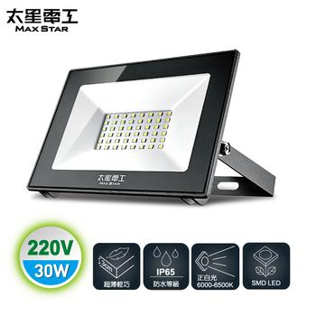 《太星電工》30WLED防水投射燈/220V/白光