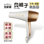 《大家源》負離子水潤護髮吹風機(TCY-1608)