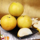 《果之家》果之家 台灣嚴選大顆13-11A優質新興梨8顆禮盒(單顆390-450g)(8顆)