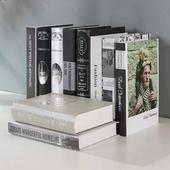 《Novella Amante》現代輕奢系裝飾書(XL)