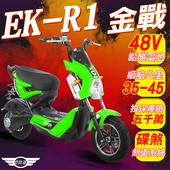 《e路通》(客約)EK-R1 金戰 48V鉛酸 800W LED大燈 液晶儀表 電動車 (電動自行車)(綠色)