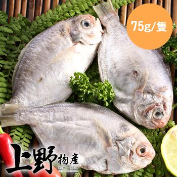 《上野物產》越南野生肉魚 (75g土10%/隻)(20隻)買就送:鮮脆刻花魷魚 (250g±10%) *1包