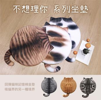 貓咪記憶棉坐墊(桔子)