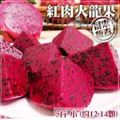 《家購網嚴選》紅肉火龍果 5斤裝 小 約12-14顆/盒(X1盒)