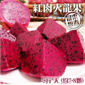 《家購網嚴選》紅肉火龍果 5斤裝 大 約7-8顆/盒(X1盒)