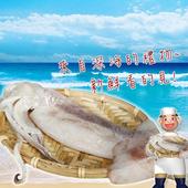 《賣魚的家》嚴選深海大魷魚(200-230g±5%/尾/包)(2包組)