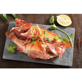 《上野物產》菲律賓紅石斑 (250g土10%/隻)(5隻)上野物產單筆滿$999送宜蘭薄鹽鯖魚(90g±10%)*2片