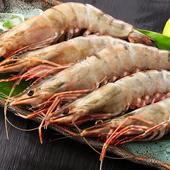 《上野物產》當季野生活凍霸王草蝦 (300g土10%,10隻/盒)(4盒)買就送:鮮脆刻花魷魚 (250g±10%) *1包