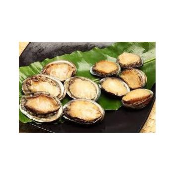 《上野物產》厚實鮮嫩帶殼鮑魚 (1000g土10%/盒,約20顆)(1盒)買就送:鮮脆刻花魷魚 (250g±10%) *1包