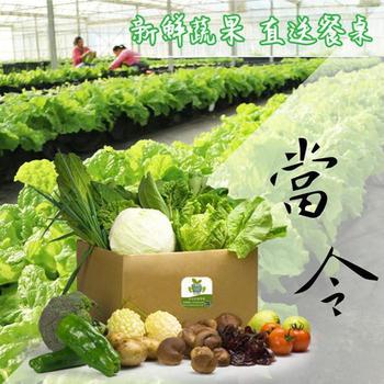 《康健生機》安心蔬菜箱(家庭號)