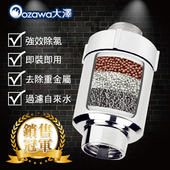 《OZAWA大澤》家用淨化活水沐浴過濾器淨水器(1個)