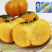《鮮採家》產地特選高山摩天嶺甜柿(8顆禮盒(9A,單顆8-9兩))