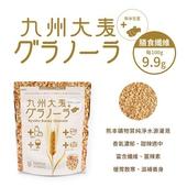 九州大麥(生薑 180g/包)