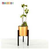 《DecoBox》時尚紅金大花架(園藝.花架.花台.盆景架.花插.攀爬架.鍛鐵花器)