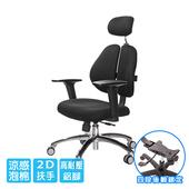 《GXG》雙背涼感 電腦椅 (鋁腳/2D升降扶手)  TW-2995 LUA2(請備註顏色)