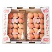 《鮮果日誌》日本空運 稀少品種白色草莓 淡雪(2盒入)